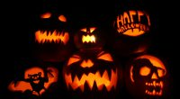 Brentwood Park Annual Pumpkin Carving Contest. Pumpkins will be carved at home and brought to school on  Tuesday, October 30th, no later than 9:00am.  Pumpkins will be displayed in the […]